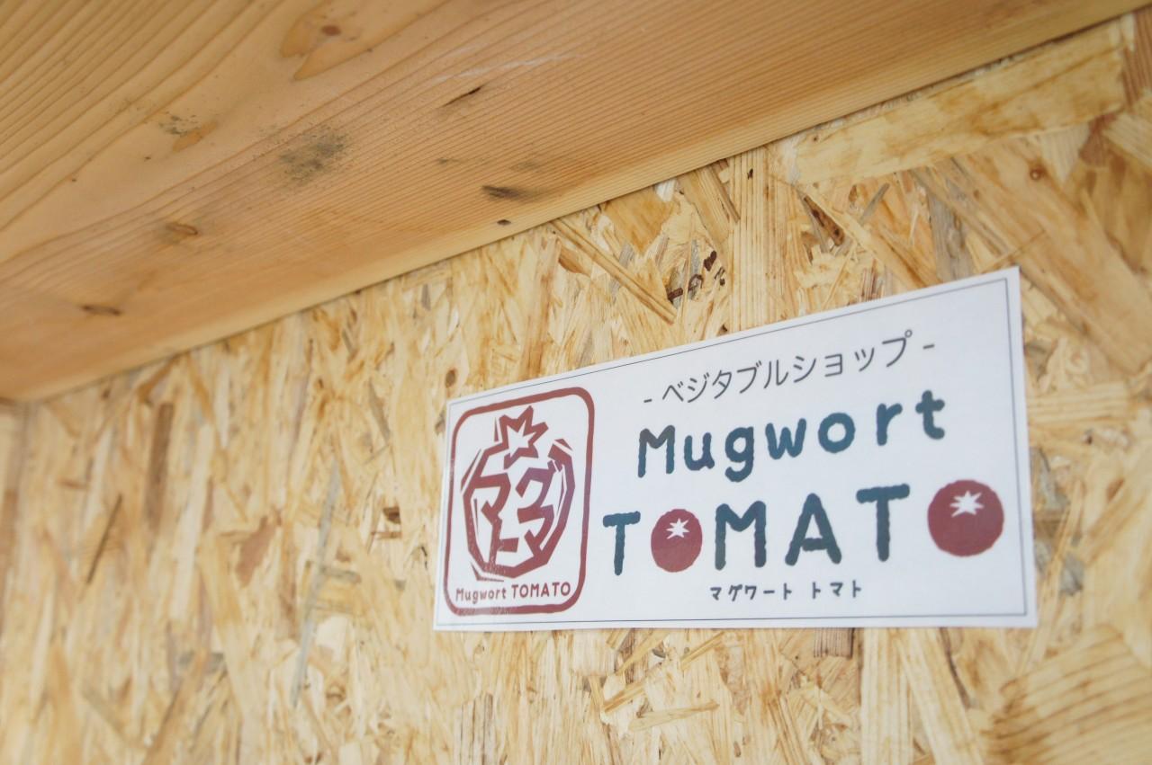 マグワートトマト